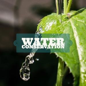 Let's talk for a minute about water conservation. . .