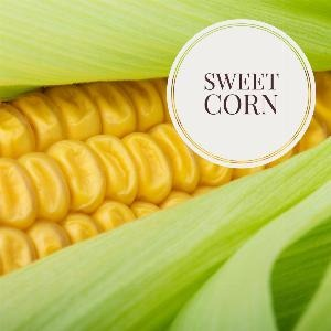 Let's talk for a minute about sweet corn . . .