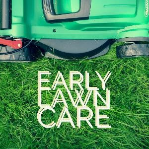 Let's talk for a minute about early lawn care. . .