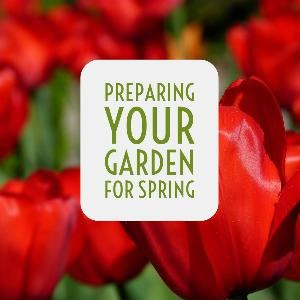 Let's talk for a minute about preparing your garden spot for spring planting. . .